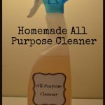 Thrifty Thursday – Homemade All Purpose Cleaner