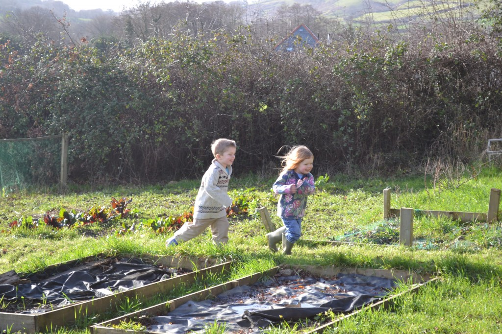 Kids Playing On Allotment