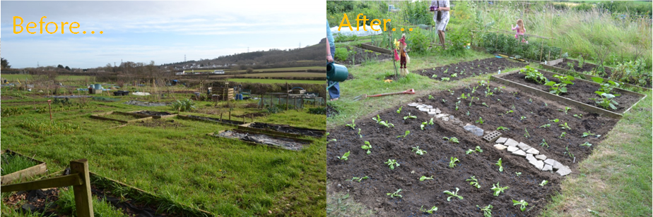 allotment progress