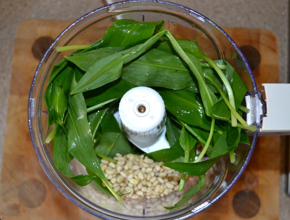 wild-garlic-pesto