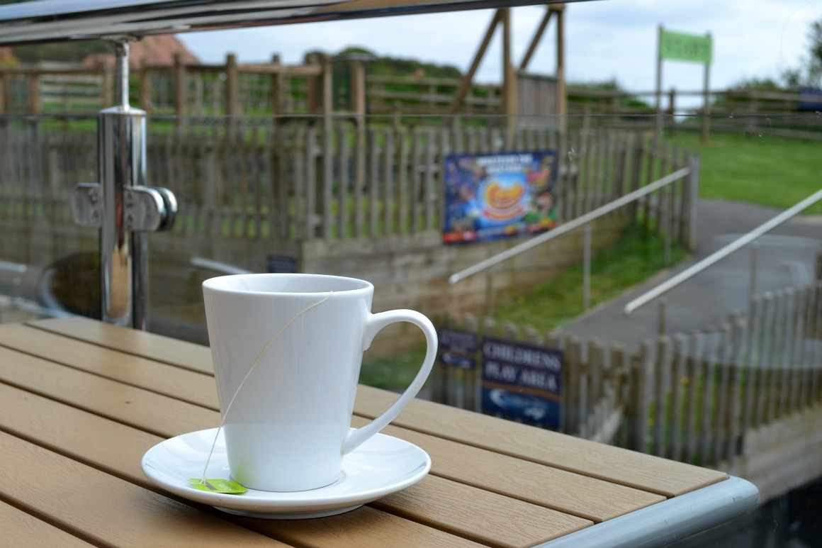 Cup of green tea at Ladram Bay