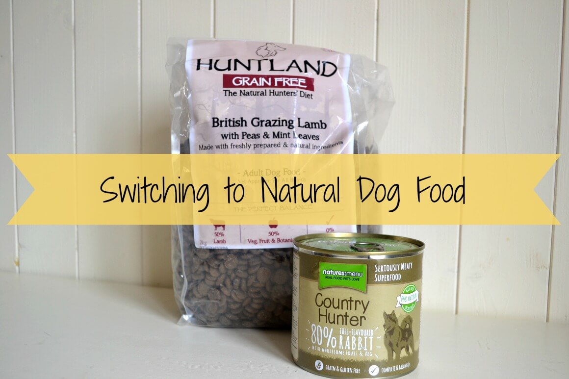 switching to natural dog food