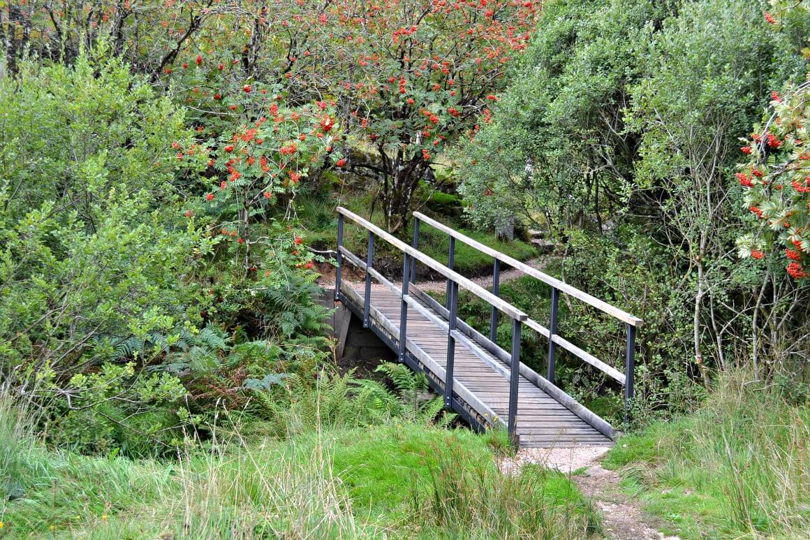 Bridge at Fernworthy Reservoir