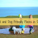 Child and Dog Friendly Places in Devon