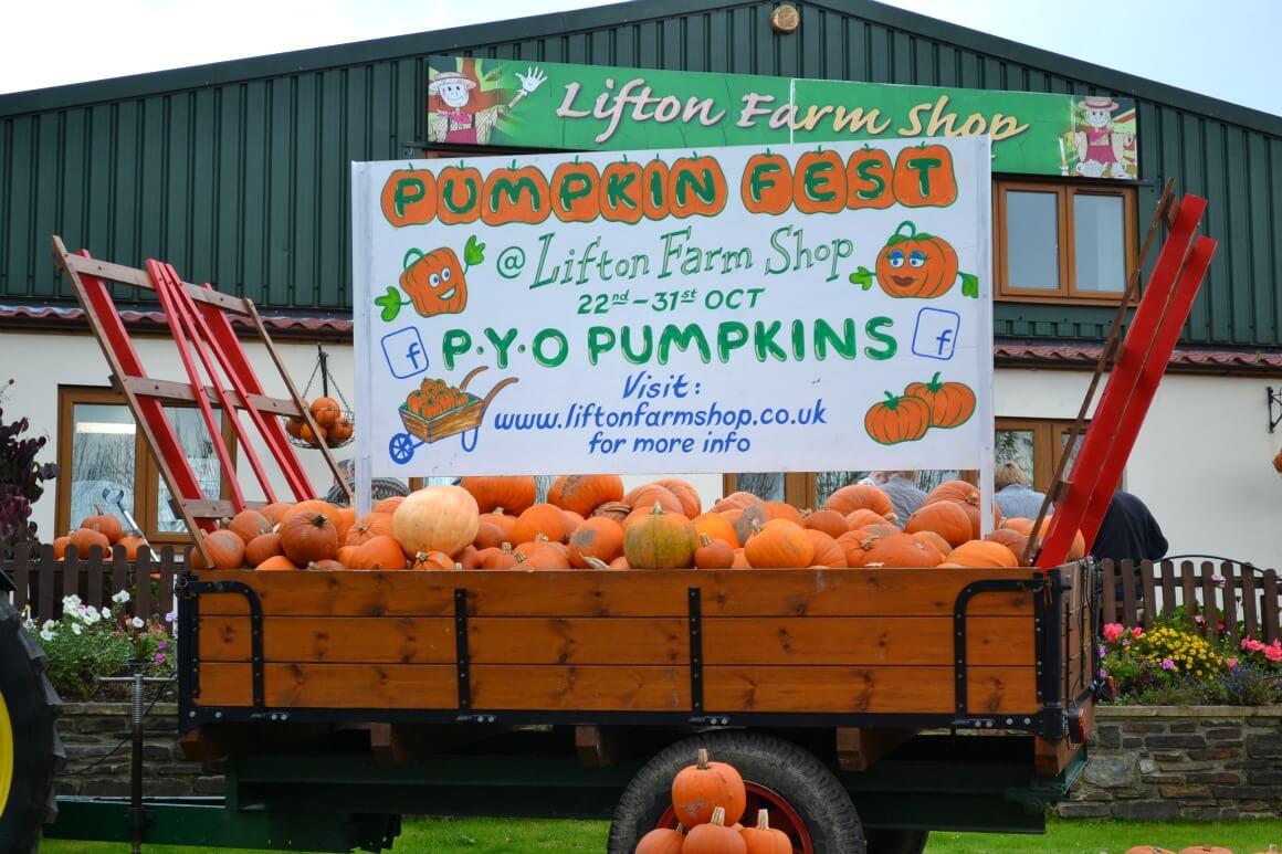 Pumpkin fest at Lifton Farm Shop