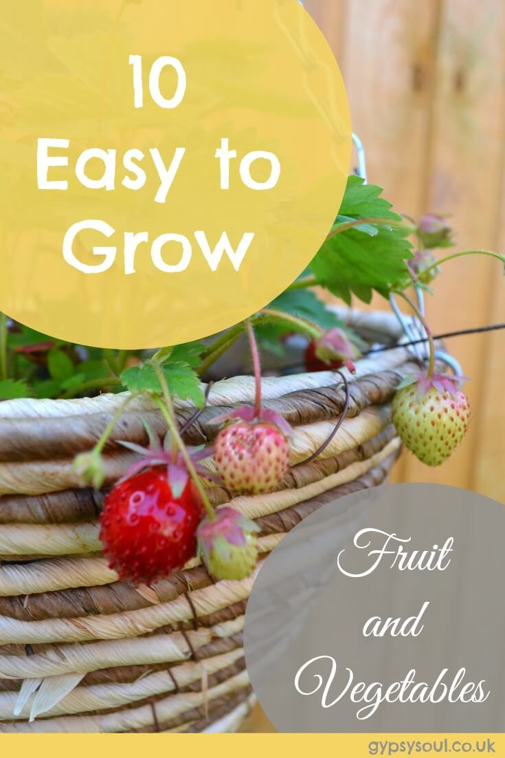 10 Easy to Grow Fruit and Vegetables