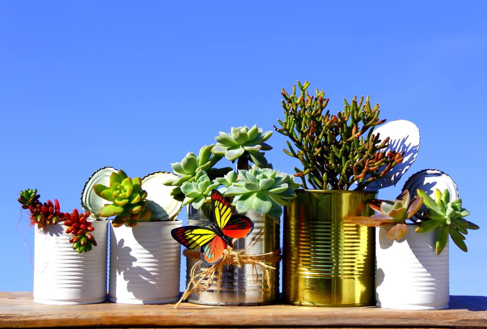 Creative containers Reuse tins