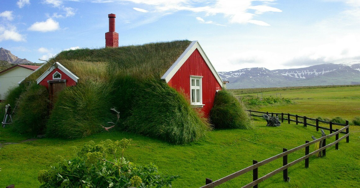 Grass roof eco home