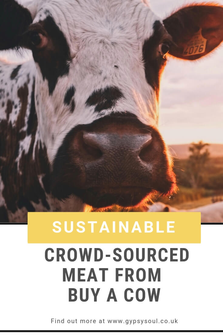 Sustainable crowd- sourced meat from Buy A Cow. Fins out more by clicking the link #sustainablelifestyle #greenliving #ecolifestyle