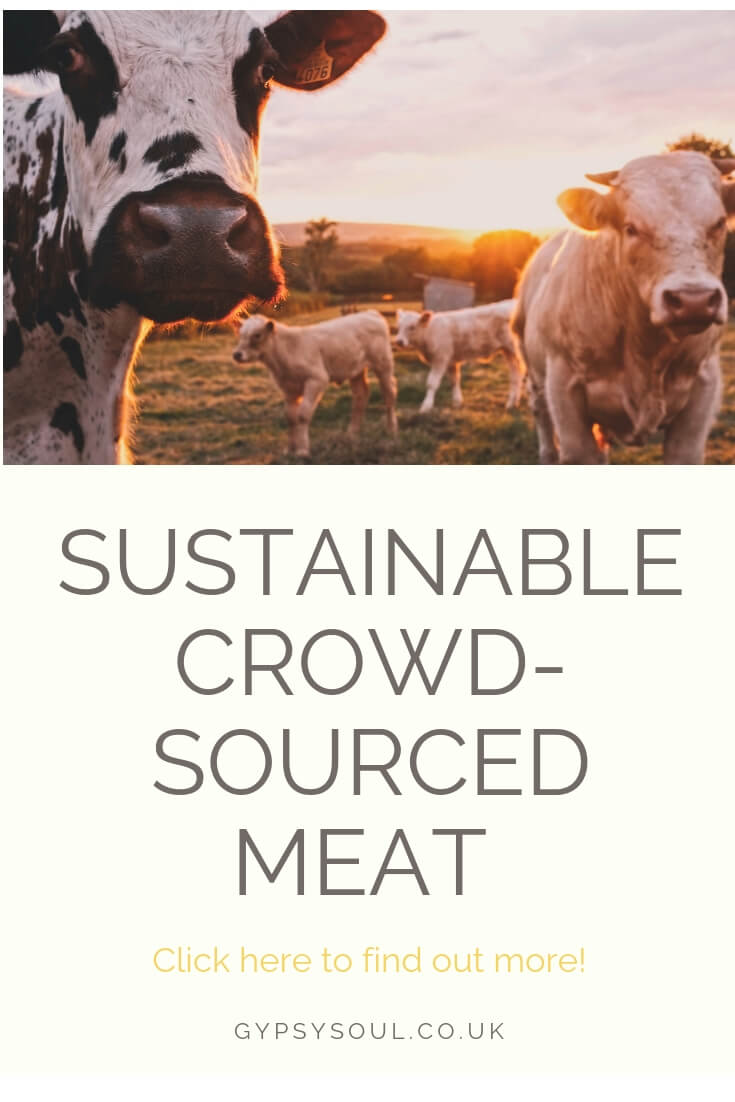 Sustainable crowd sourced meat from Buy A Cow. Find out more by clicking the image. #SustainableLiving #EcoLifestyle #GreenLiving