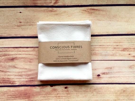 conscious fibre