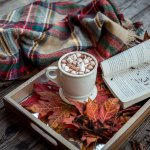 Autumn Organisation: Ensuring Your Home Is Ready For The Cosy Seasons