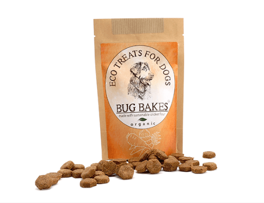 bug bakes dog treats