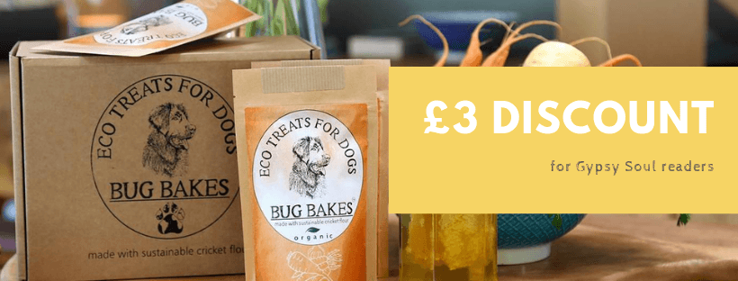 Discount on bug bakes for Gypsy Soul readers