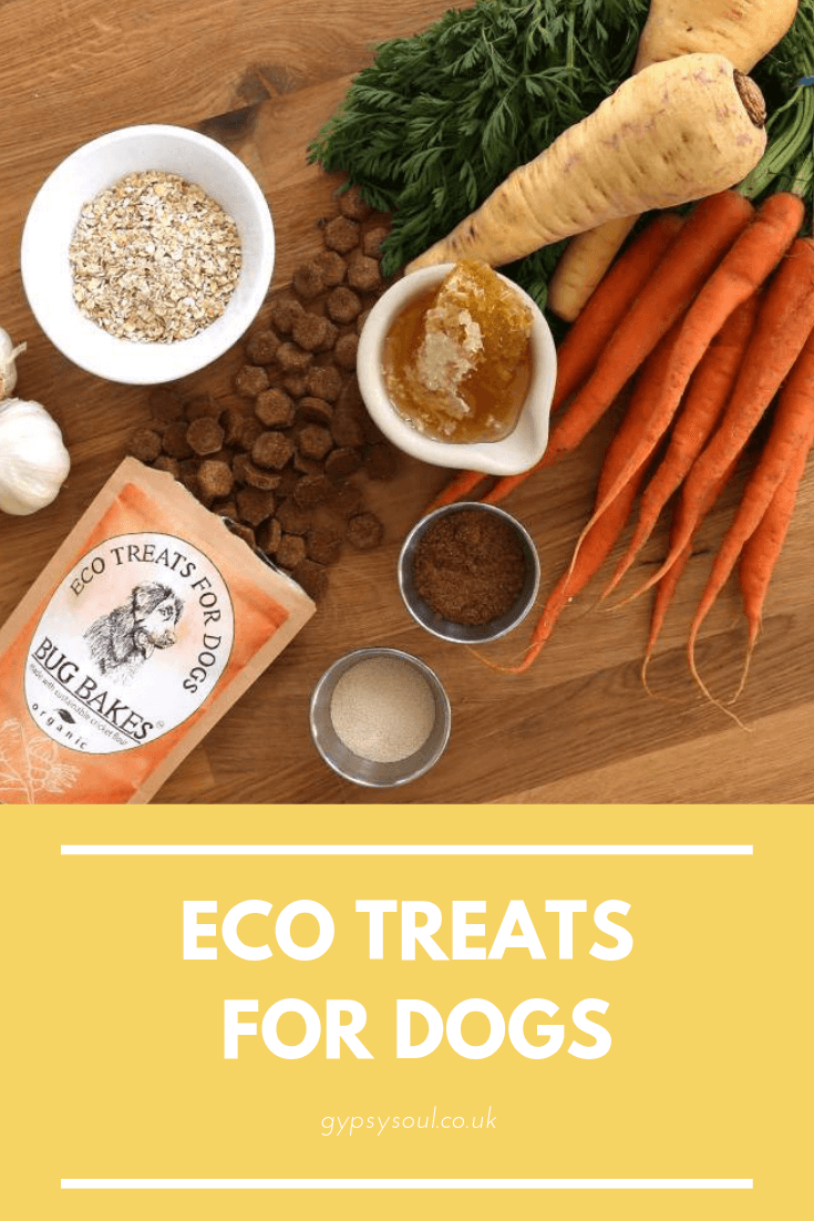 Check out these eco & zero waste treats for dogs. Perfect for anyone that's trying to live a more sustainable lifestyle. #zerowaste #sustainablelifestyle