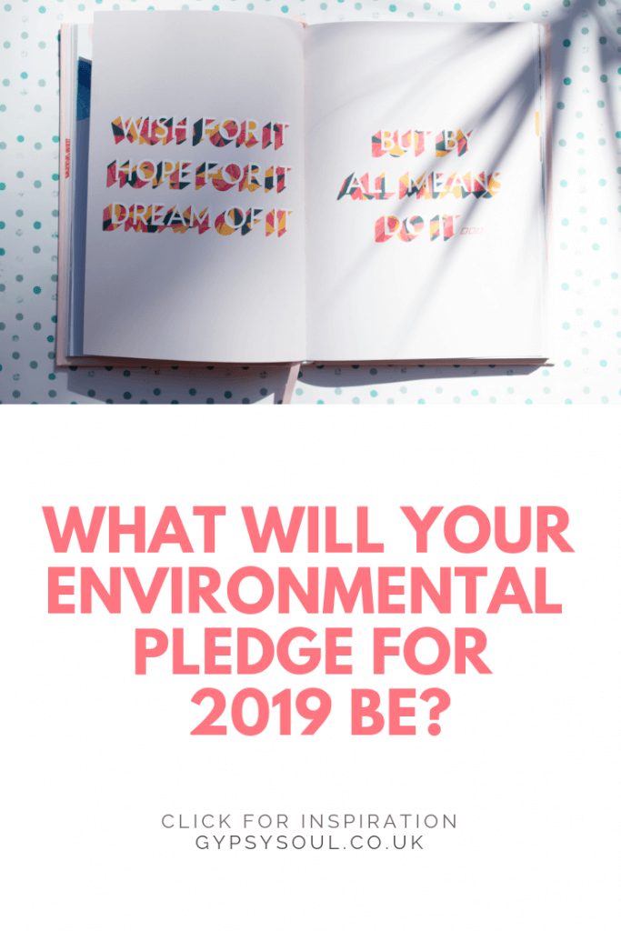 Are you wanting to live a more sustainable lifestyle in 2019? Have you made an environmental pledge yet? Click the image for inspiration & ideas from easy to hard pledges. #sustainablelifestyle #ecoliving