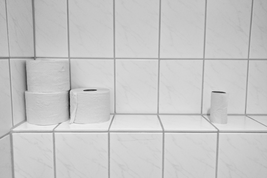 How to give up toilet roll and why you should