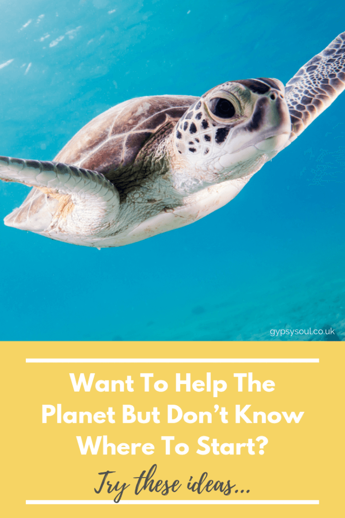 Do you want tohelp the planet but don't know where to start? Try these ideas... #sustainableliving #ecolifestyle #zerowaste