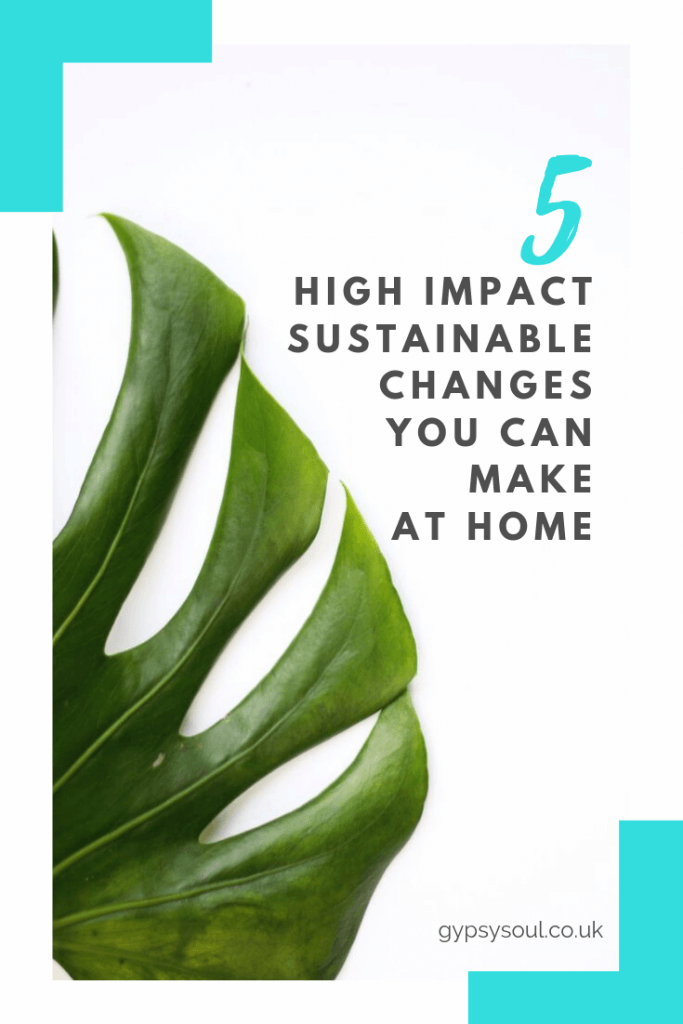 Want to make changes at home? Here are 5 high impact sustainable changes that you can make at home #sustainableliving #greenliivng #ecohome