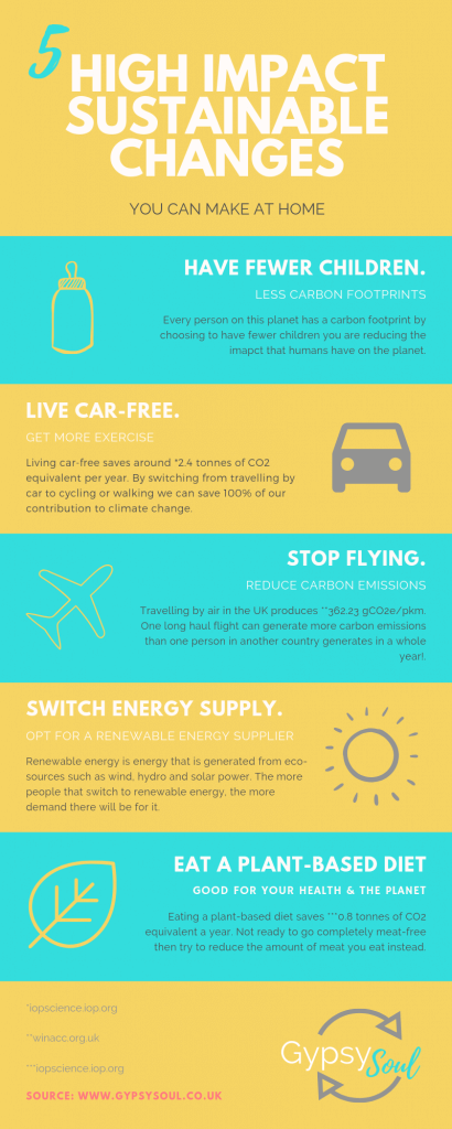 5 high impact sustainable change sthat you can make at home infographic