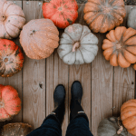 The Ultimate Guide To Having A Sustainable Halloween