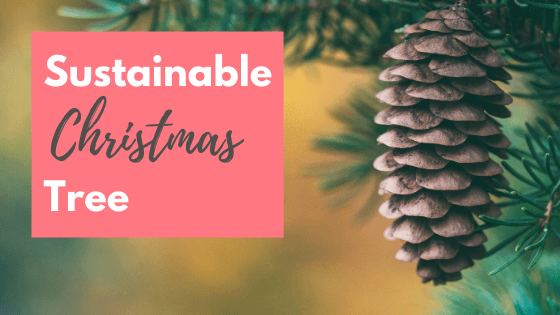 Sustainable Christmas Tree