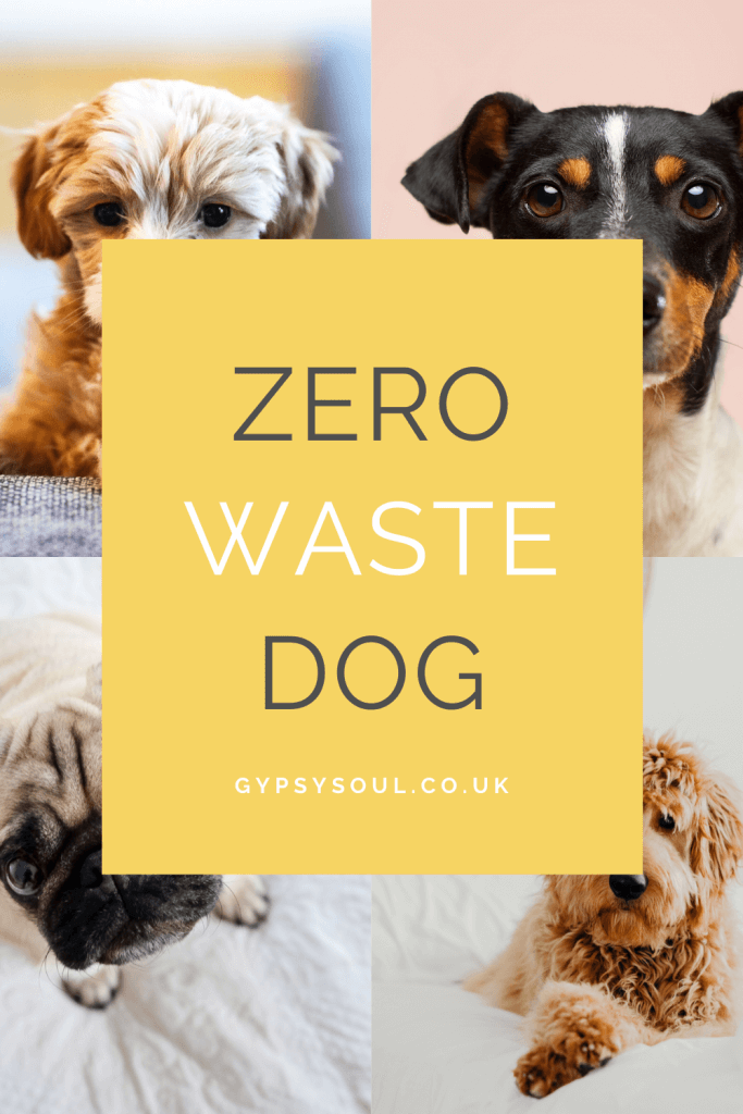 Zero Waste Dog. Find out more here!